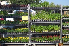 Garden-Center-Annuals-Cart-500x300