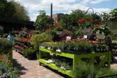 Garden-Center-Chicago-Flowers-Paver-walkway-500x300